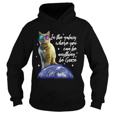 Hoodie Cat In the galaxy where you can be anything be Goose shirt