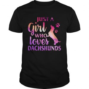 Just A Girl Who Loves Dachshund Colorful Gift tShirt