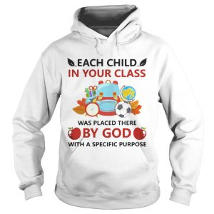 Each child in your class was placed there by God with a specific purpose hoodie