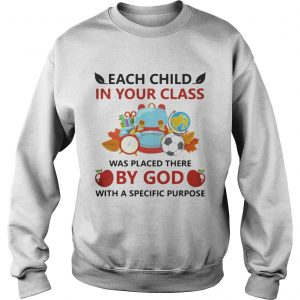 Each child in your class was placed there by God with a specific purpose sweatshirt