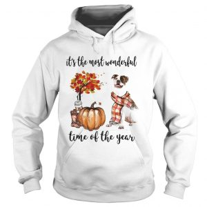 American Pit Bull Terrier its the most wonderful time of the year Hoodie